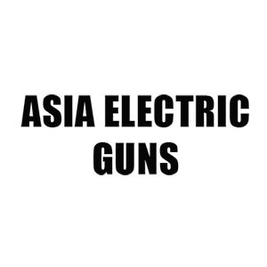 ASIA Electric Guns (AEG)